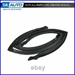 Rear Roof Rail Weatherstrip Seal Pair Set for GM A Body 4 Door